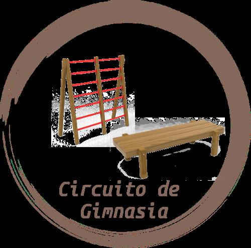 Circuito de Gimnasia Crisela